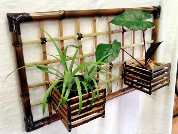 bambu 2